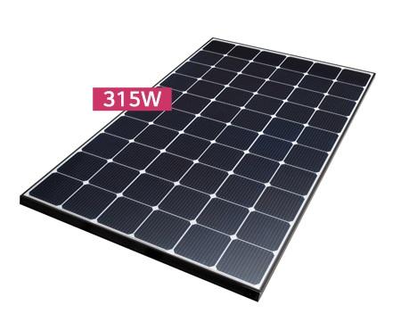 LG Solar NeON2 Modul LG315N1C-G4