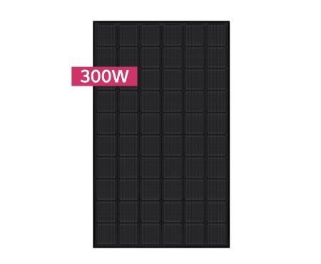LG Solar NeON2BLACK Modul LG300N1K-G4